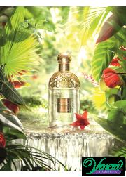 Guerlain Aqua Allegoria Limon Verde EDT 125ml για άνδρες και Γυναικες ασυσκεύαστo Unisex Аρώματα χωρίς συσκευασία