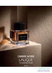 Lalique Ombre Noire EDP 100ml για άνδρες Ανδρικά Αρώματα