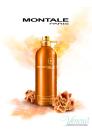 Montale Aoud Melody EDP 100ml για άνδρες και Γυναικες ασυσκεύαστo