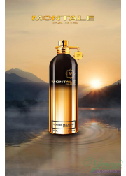 Montale Leather Patchouli EDP 100ml για άνδρες και Γυναικες Unisex Fragrances