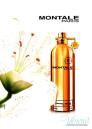 Montale Santal Wood EDP 100ml για άνδρες και Γυναικες ασυσκεύαστo Unisex Аρώματα χωρίς συσκευασία
