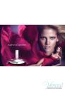 Calvin Klein Euphoria Set (EDP 50ml + Body Lotion 200ml) για γυναίκες Γυναικεία σετ