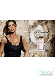 Dolce&Gabbana Pour Femme EDP 100ml for Women Without Package Women's Fragrances Without Package