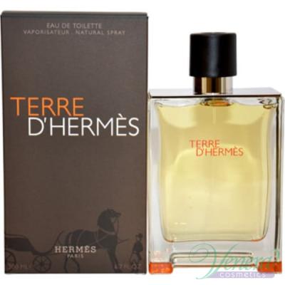 Hermes Terre D'Hermes EDT 100ml για άνδρες Ανδρικά Αρώματα