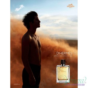 Hermes Terre D'Hermes Pure Parfum 200ml for Men Without Package