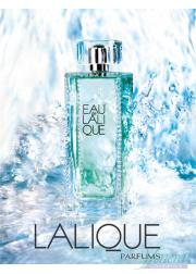 Lalique Eau de Lalique EDT 200ml for Women Without Package Women's Fragrances without package