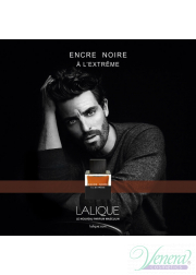 Lalique Encre Noire A L'Extreme EDP 100ml for Men Men's Fragrance
