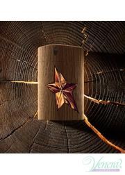 Thierry Mugler A*Men Pure Wood EDT 100ml για άνδρες Ανδρικά Αρώματα